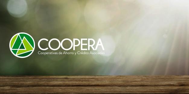 Coopera se reúne con expertos para revisar temas de la industria